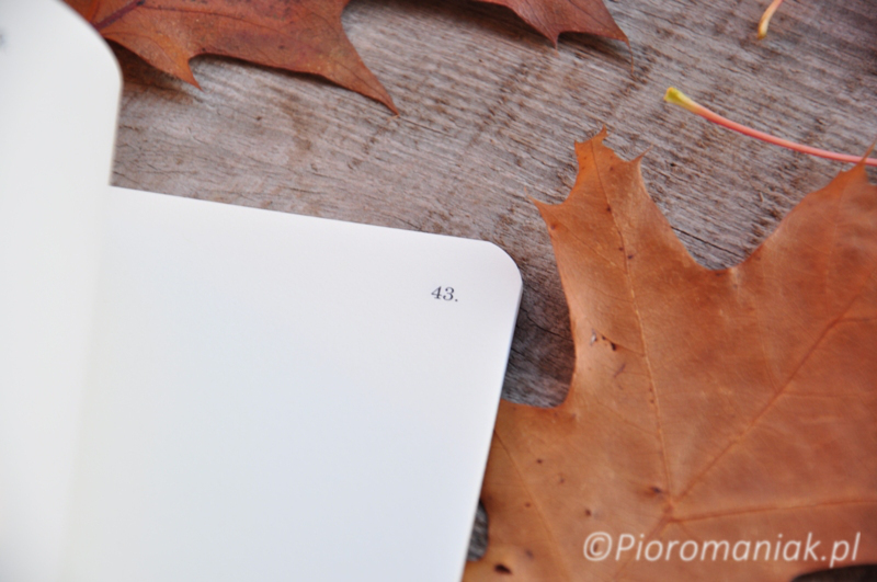 Notesy Field Notes Dime Novel sklep Pioromaniak