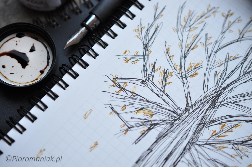 Noodlers X-Feather i KWZ Ink Miodowy